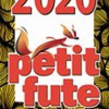 Le Petit Futé 2020